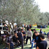 3nd Paintball tournament at Paintball Crete on 12-13 March 2011